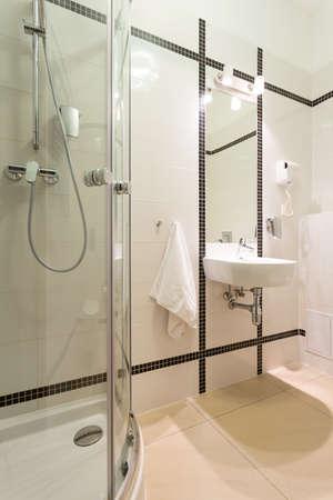 bathroom design: Interior of bright bathroom with black elements