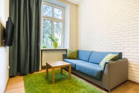 Veduta di comodo divano in piccolo appartamento