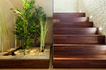 Beauty plants in hall and wooden stairs photo