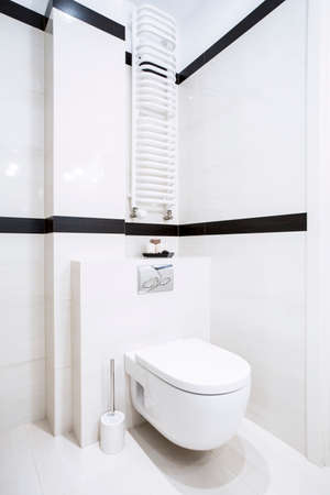 Interior of clean and fresh white toilet photo