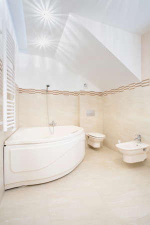Luxury bright bathroom interior with big bath photo