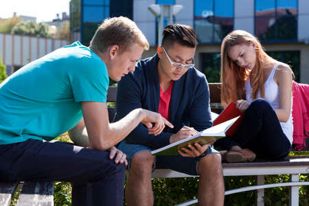 campus building: International young students learning together outside