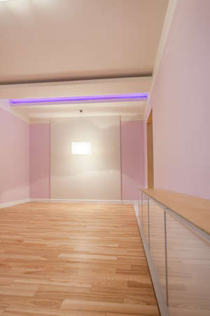 Modern empty room with pastel pink walls photo