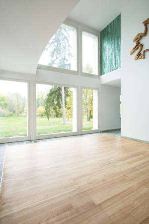 interior spaces: Picture of bright unfurnished front room