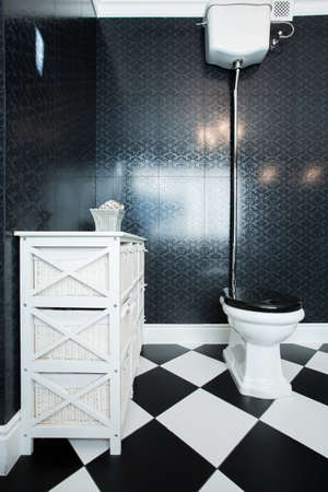Picture of black and white toilet in big bathroom photo