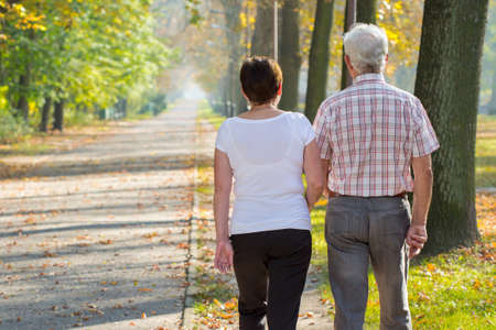 old people walking: Retire couple in love and fall morning in park