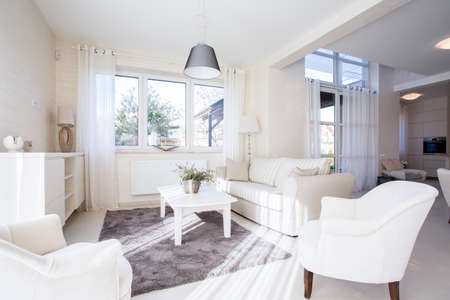 Luxe et un salon spacieux dans un style élégant Banque d'images - 33936466
