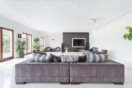 Elegant living room interior in luxury villa photo