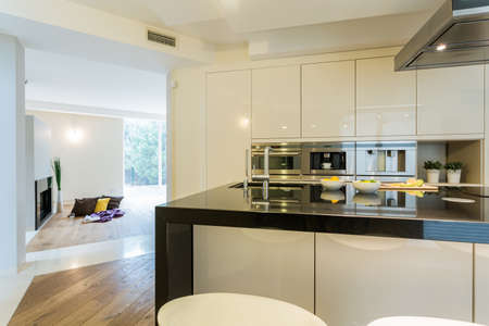 living unit: View of spacious kitchen in modern apartment