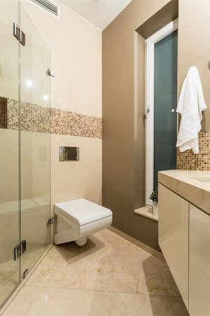 handbasin: Bathroom for guest interior in  luxury apartment
