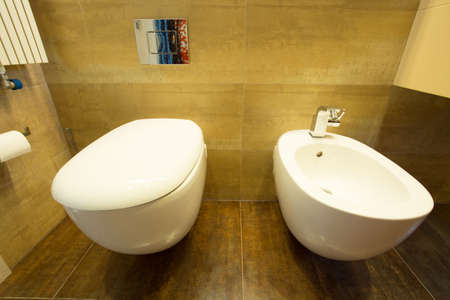 Clean toilet interior with lavatory and bidet photo