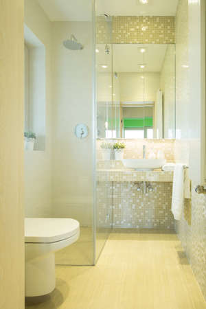 the residence: Interior of luxury toilet in modern residence Stock Photo