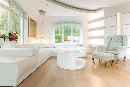 Luxury bright spacious living room