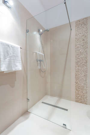 glass door: Exclusive shower with glass door in luxury bathroom
