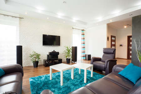 extravagance: Beautiful modern living room with big exclusive movie theater Stock Photo