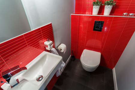 bowl sink: Vertical view of red tiles in contemporary toilet