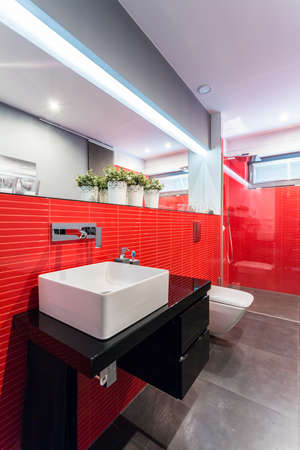 Interior of designer toilet with red tiles photo
