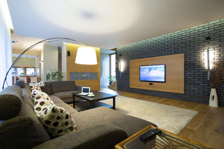 Brick wall in modern spacious drawing room