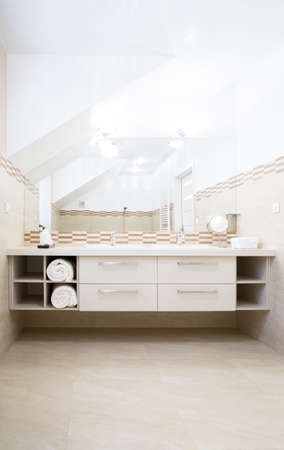 Vertical view of bathroom with white counter