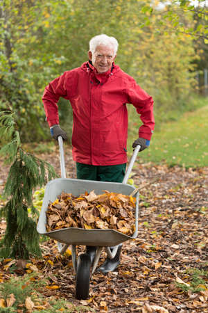 Senior man cleaning garden from leaves during autumn time Stock Photo
