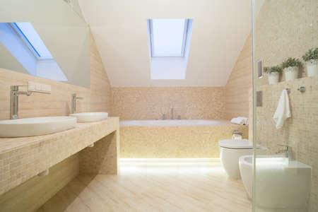 bathroom interior: Photo of bathroom interior in beige color