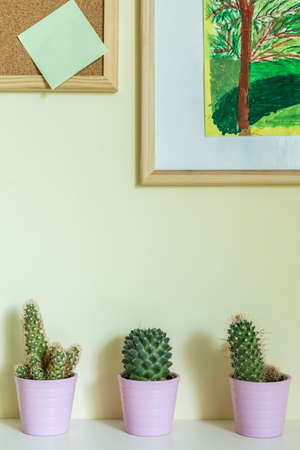 Green cactuses in flowerpots on a nightstand photo