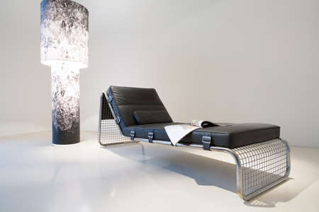 progressive art: Designed leather sofa and expensive lamp, horizontal