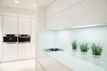 expensive: View of modern and expensive kitchen interior Stock Photo