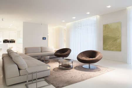condominium: Living room furniture in modern house, horizontal