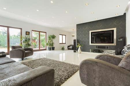 高価な家、水平に巨大なリビング ルーム 写真素材