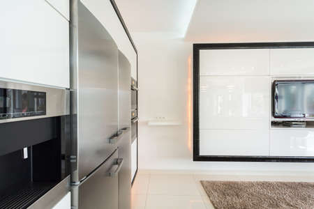 expensive: View of expensive fridge in designed house