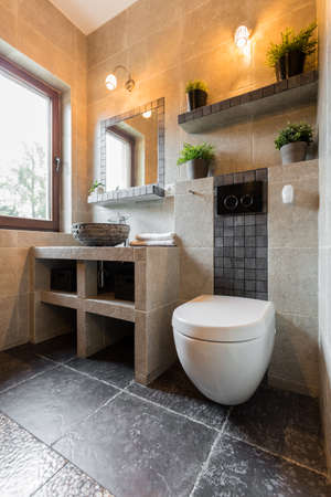 Vertical interior of the bathroom with toilet photo