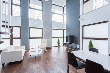 enormous: Enormous living room with high ceiling