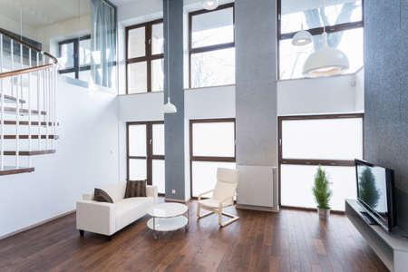 Détendez-vous l'espace avec un canapé confortable et un cinéma à domicile Banque d'images - 35650451