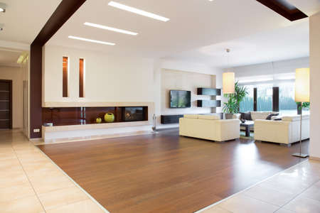 fireplace living room: Interior of modern area in spacious house