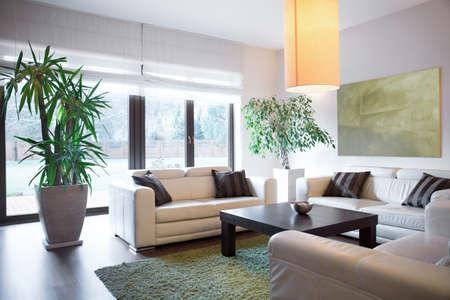 case moderne: Vista orizzontale di spazio di vita all'interno della casa