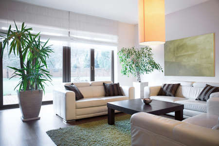 Horizontal view of living space inside house Banque d'images