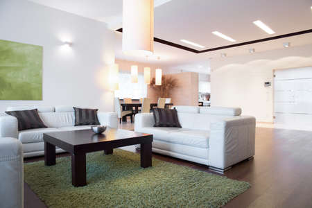 bright space: Horizontal view of bright space inside apartment