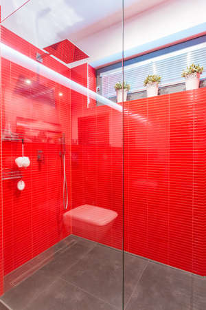 Modern exclusive shower with glass door and red wall photo
