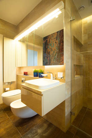 bidet: View of bathroom with toilet and bidet