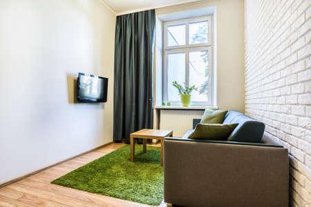 緑の絨毯と小さな、居心地のよいリビング ルーム