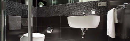View of black and white luxurious bathroom