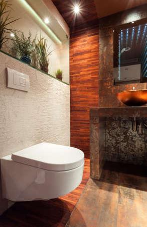 bathroom equipment: View of porcelain toilet in expensive bathroom Stock Photo