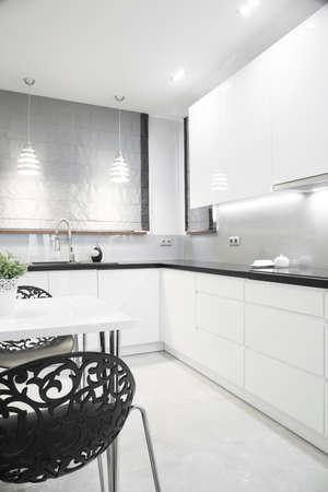 manor house: Luxury silver kitchen interior in modern design