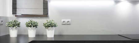 outlet: Flowerpots on the wooden worktop in the kitchen