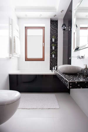 Luxury washroom in black and white design 免版税图像