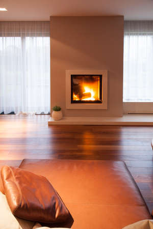 a detached living room: Burning fireplace in cozy living room interior