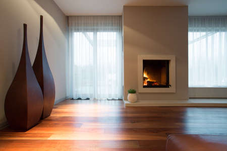 modern living room: Burning fireplace and designed decoration in living room