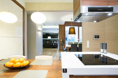 Open space with kitchen in modern apartment