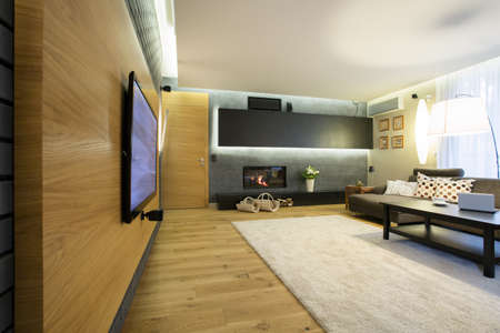 Spacious luxury lounge with big movie theater on wall